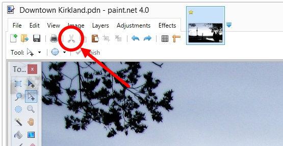 paint_net.jpg